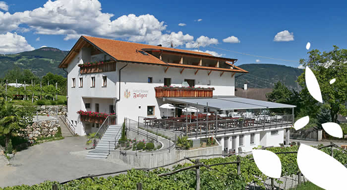 Restaurant Pizzeria Falger - Lana in South Tyrol